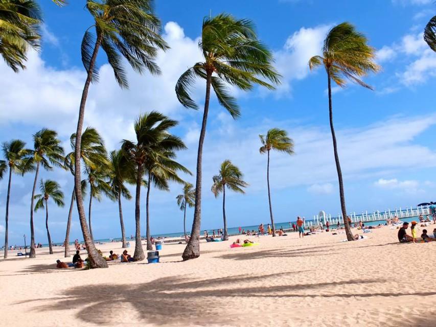 ハワイの風景が見える音楽 on the beach at waikiki 遊ぶ 体験する