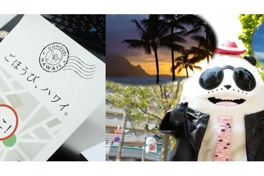 スシローのすしパンダが、ごほうび、ハワイ。をゲット!?