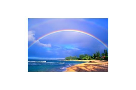 「#絶景有休ハワイ」の優秀作品ご紹介