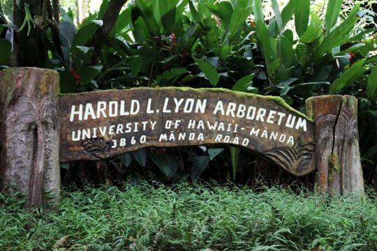 Lyon Arboretum「ライアン植物園」