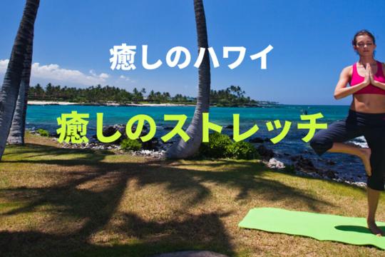 【癒しのハワイ】癒しのストレッチで体をほぐしてスッキリしよう!