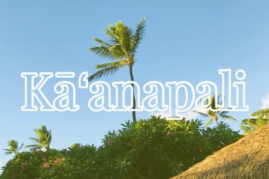 メレの中のハワイ百景〜マウイ島カアナパリ