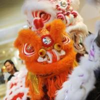アラモアナセンターで亥年の春節を祝おう!