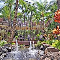 4月30日はアーバーデイ! ワイキキのロイヤルグローブで、椰子の魅力に触れよう