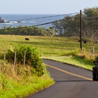 交通手段 -ハワイでの移動-