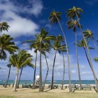 ハワイ情報が満載のEBOOK