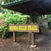 Manoa Falls Trail 「マノア・フォールズ・トレール」