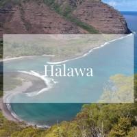 メレの中のハワイ百景~モロカイ島ハラワ