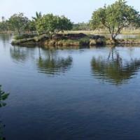 マナの宿る池カラフイプアア