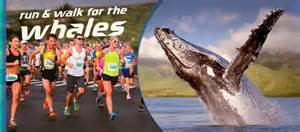 Run and Walk for Whales