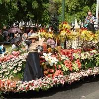 アロハ フェスティバル - ワイキキホオラウレア