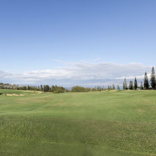 Cover Photos: golf