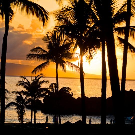 【2019年】10月~12月までハワイで開催されるイベント情報