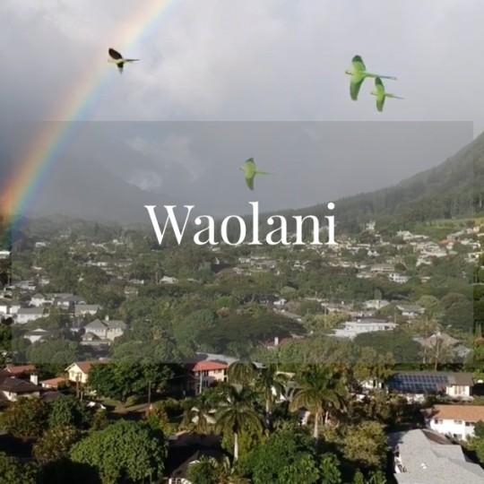 メレの中のハワイ百景〜オアフ島ワオラニ