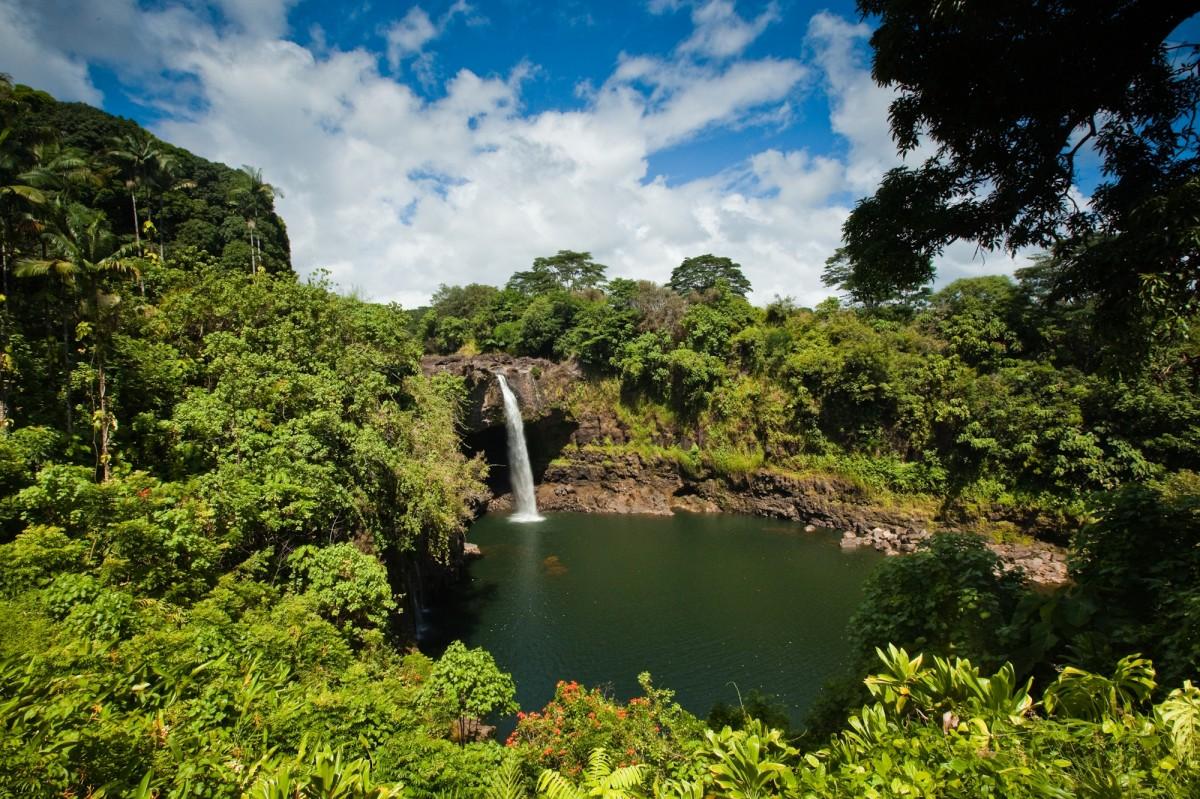 ワイルク川州立公園:ハワイの「...