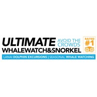 Ultimate Whale Watch and Snorkel