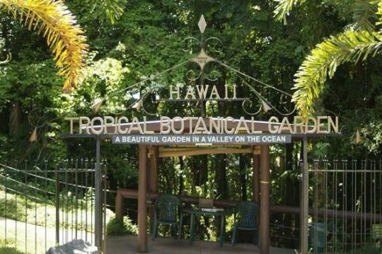ハワイ トロピカル ボタニカル ガーデン