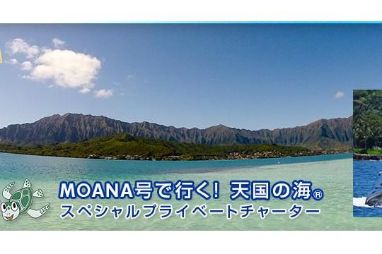 2月21日まで!天国の海® スペシャルチャーター★創立35周年スペシャル★