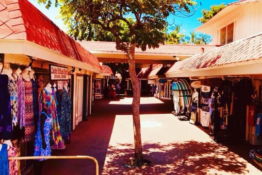 ハワイ島の魅力を五感で感じれるツアーが復活!