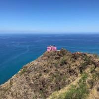 ハワイでオプショナルツアーの後は・・・ハワイ大地の恵みでヒーリング ?ノニローション?