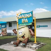 ハワイ島のマウナロア・ビジターセンター