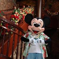 アウラニ・クリスマス・セレブレーション