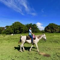 カイルアコナで乗馬をしよう!